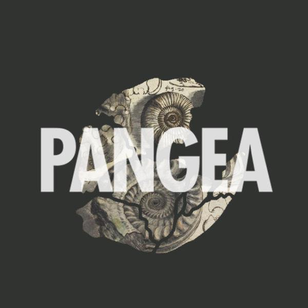 Pangea Egyesület